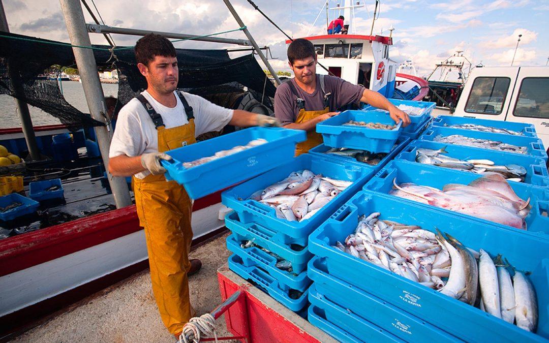 El Departament d'Agricultura destinarà 2,8 M€ en ajuts al sector pesquer en el marc del Fons Europeu Marítim i de la Pesca (FEMP)